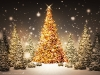 New_Year_wallpapers_Christmas_forest_011575_.jpg