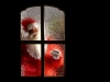 New_Year_wallpapers_Santa_011600_.jpg