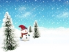 New_Year_wallpapers_Snowman_011553_.jpg