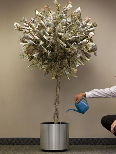 грошове_дерево