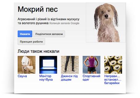 Google_ніс